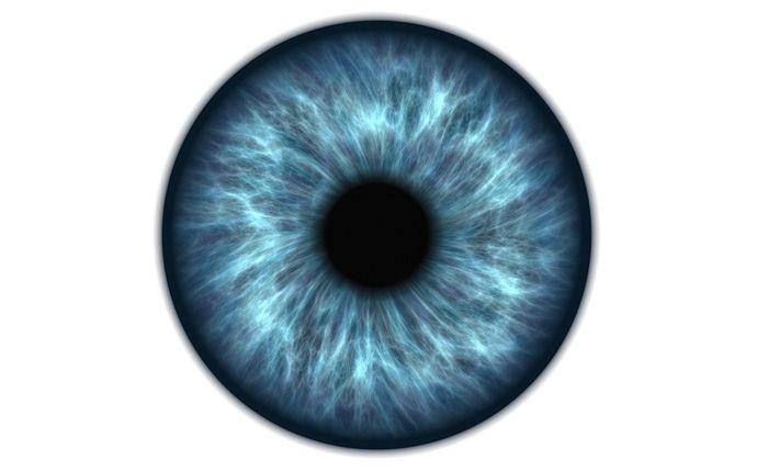 Радужки глаза