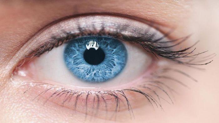 Глаз женщины голубого цвета