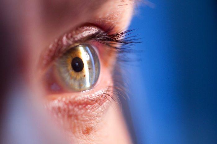 Заболевание катаракта