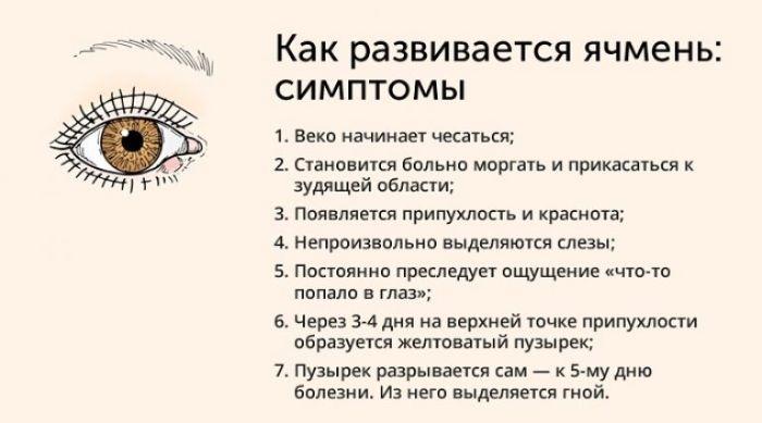 Развитие и симптомы ячменя