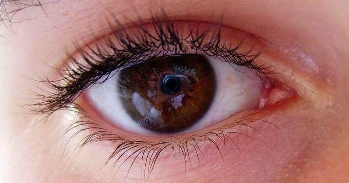Глаз коричневый